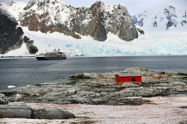A Last Minute Trip to Antarctica: In Conversation with Alison Mackey